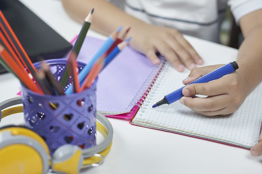 Assistance for Isolated Children for homeschooling