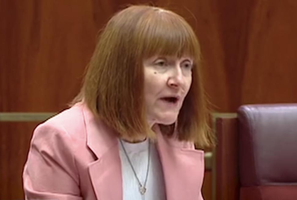 Greens Senator Senator Rachel Siewert