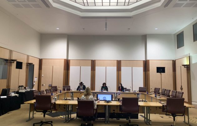 ParentsNext Human Rights Committee at Parliament House, Canberra